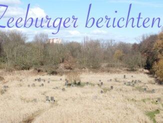 Zeeburger berichten