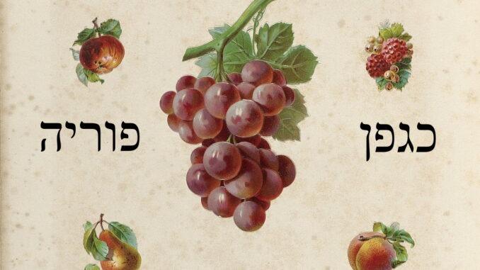 """hendrika dotsch""""als een vruchtbare wijnrank"""""""